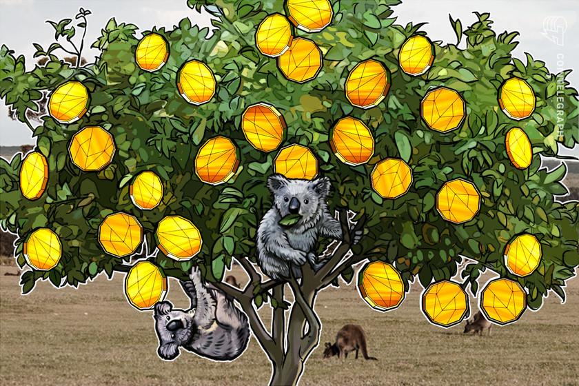 Blockchain Australia calls the grunt for crypto protected harbor