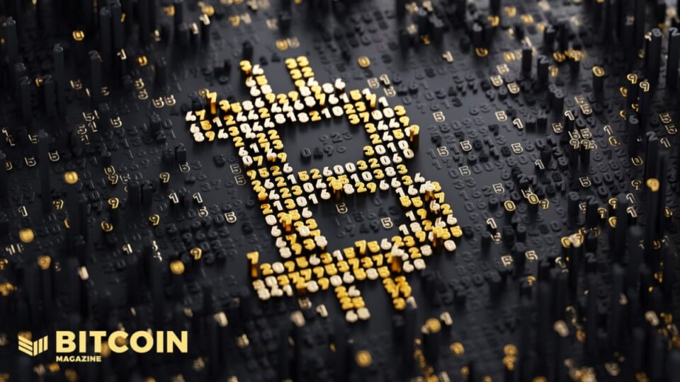 Six Reasons Why You Have to Speed Your Accept as true with Bitcoin Node