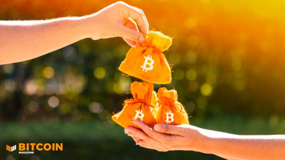 Bitfinex Now Lets Alternate Users Denominate Bitcoin In Sats