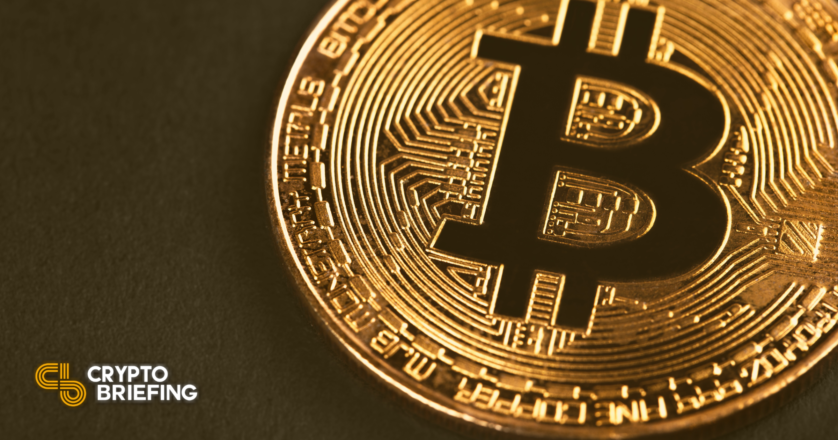 Bitcoin Whales Acquire as Bitfinex Lengthy Calls Surge